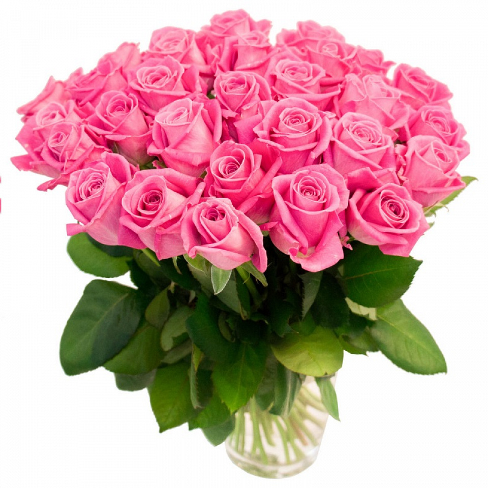 Розовые розы картинка с днем рождения, открытка день